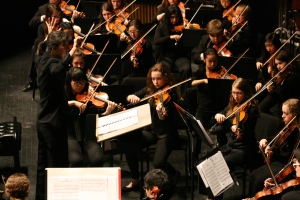 Fox Valley Youth Symphony for Artistic Adventures
